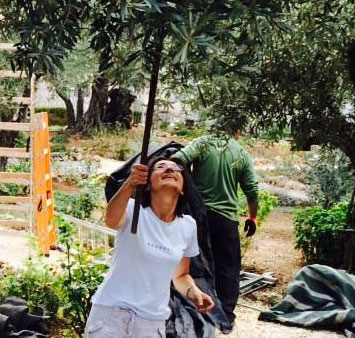 Israel-picture-in-the-garden-thumb